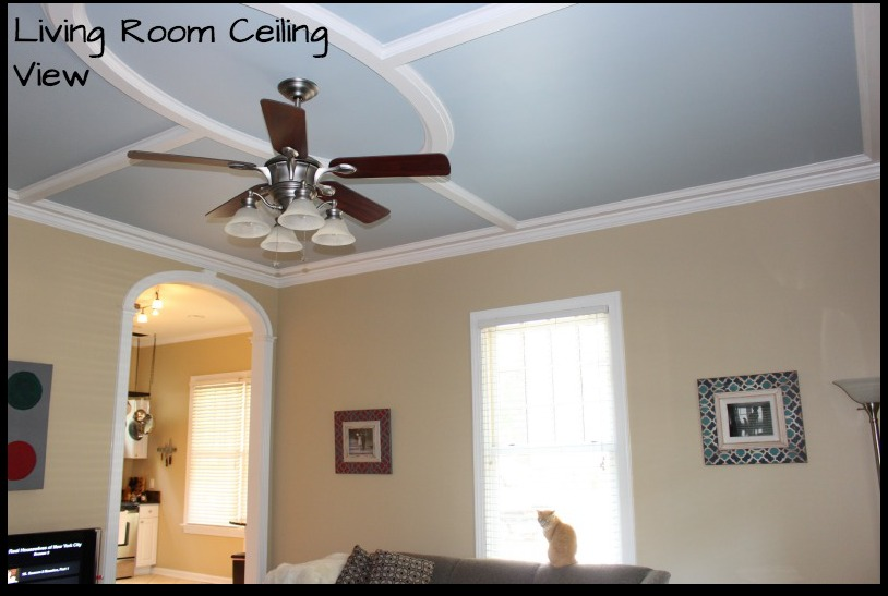 Living Room Ceiling View