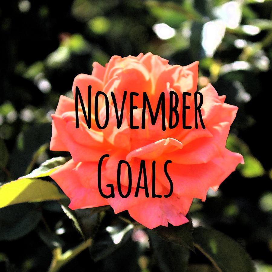 November-Goals-2014