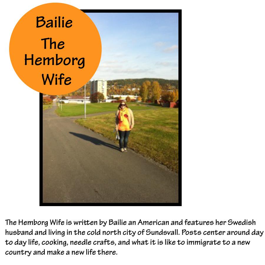 Tour-of-Blogland-Bailie