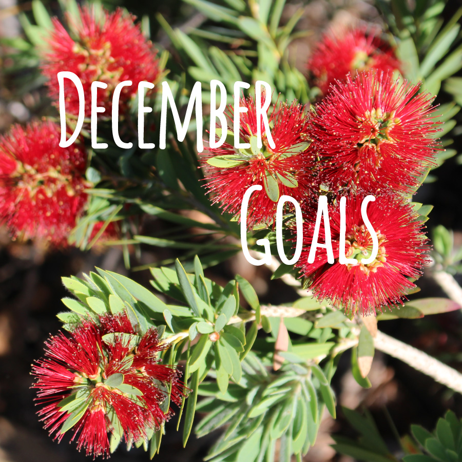 December-Goals-2014