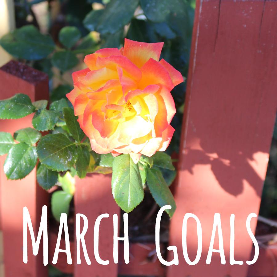 March-Goals-2015
