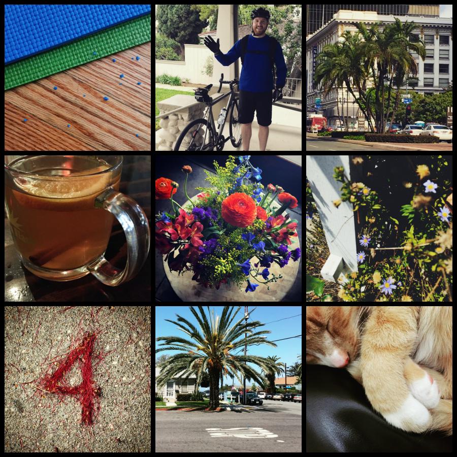 365 April Pictures Part 3
