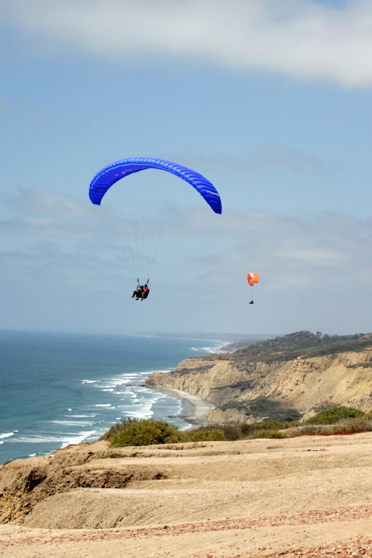 Blue & orange glider
