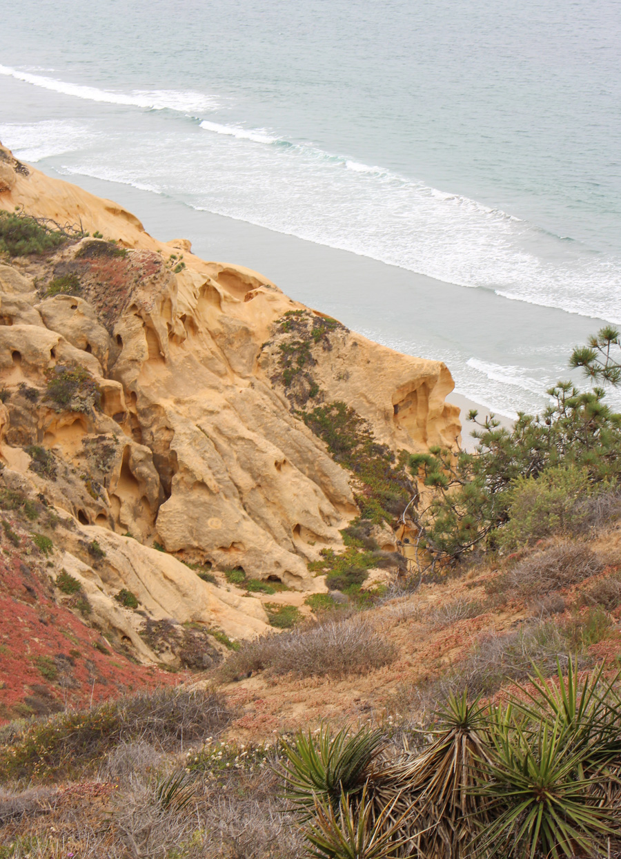 Guy-Fleming-Trail-Ocean-&-Cliff