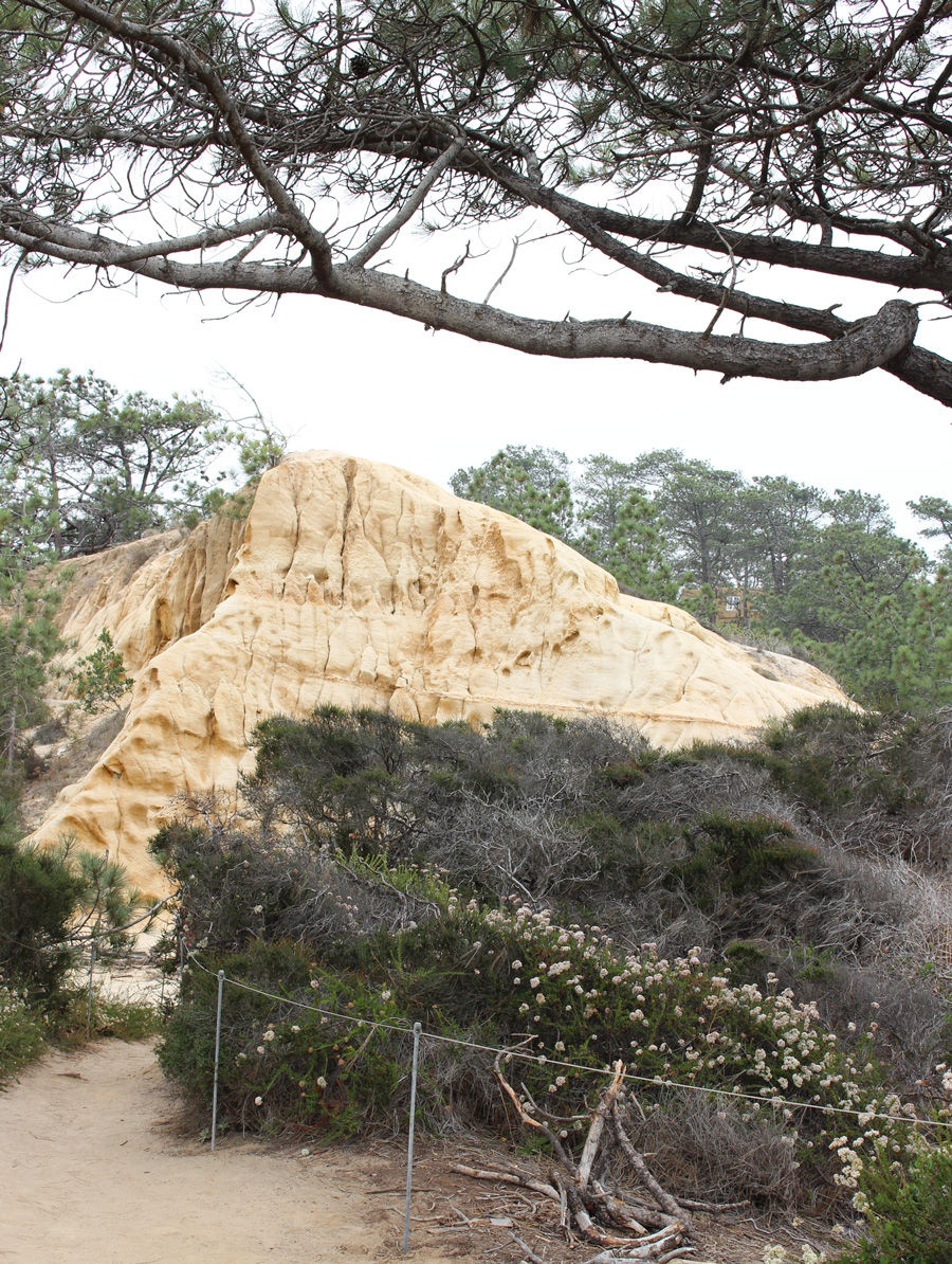 Guy-Fleming-Trail-Rock-Formation