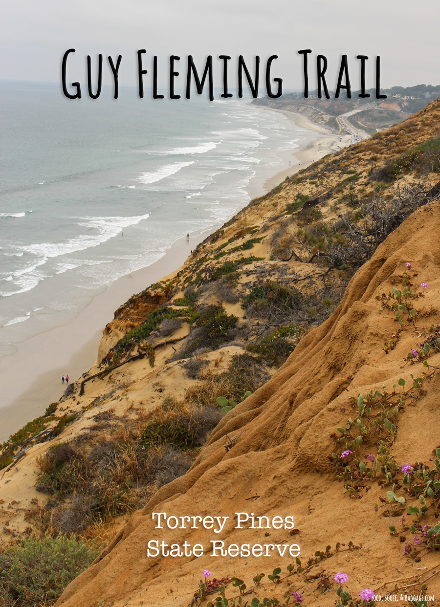Guy-Fleming-Trail-Torrey-Pines-State-Reserve