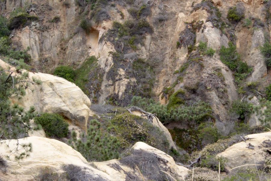 Parry-Grove-Rocks