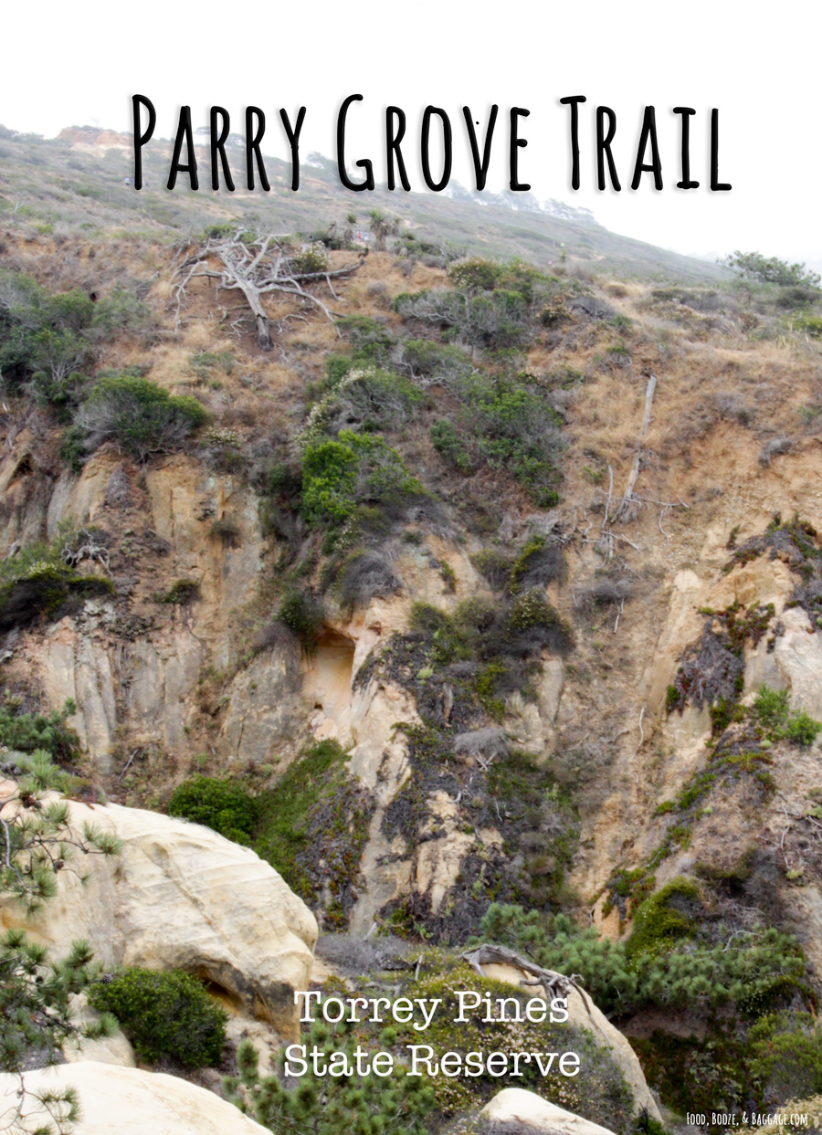 Parry-Grove-Trail-Torrey-Pines-State-Reserve