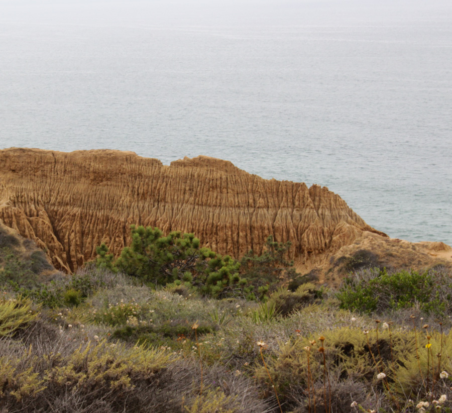Parry-Grove-Trail-rock-formation
