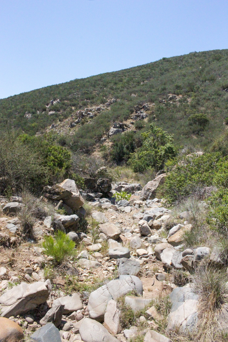 Dried-Stream-in-Mission-Trails-Regional-Park