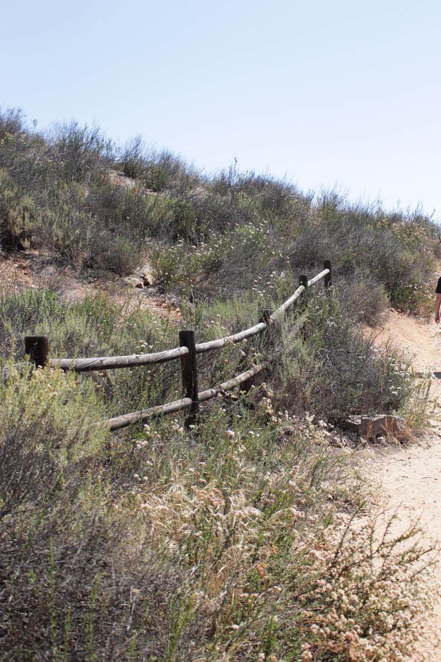 Grassland-Loop-Trail-at-Mission-Trails-Park