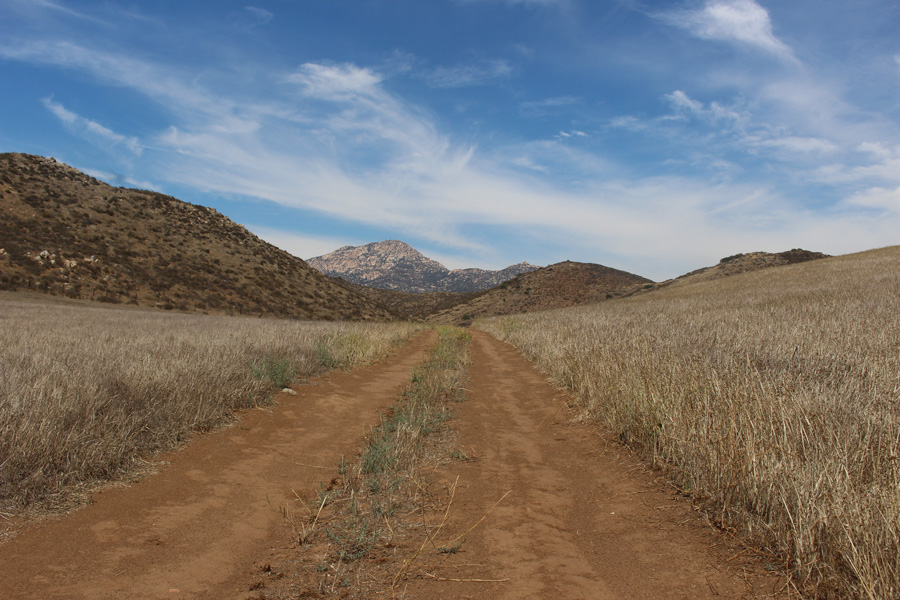 Hollenbeck-Canyon-Trail-View