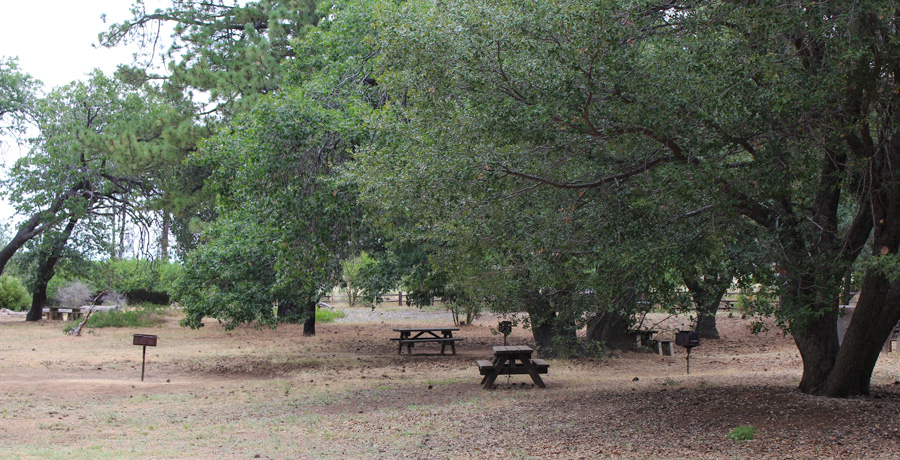 Paso Picacho Campground