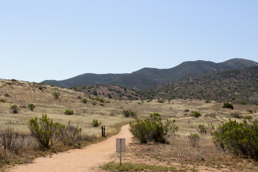 The-Grassland-Loop-at-Mission-Trails-Park