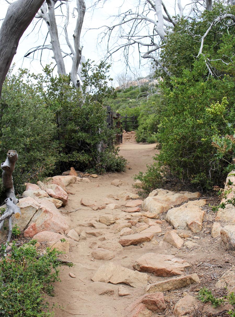 Trail at Stonewall Peak