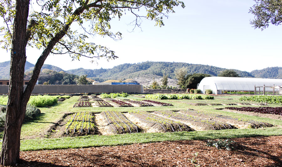 French Laundry Farm