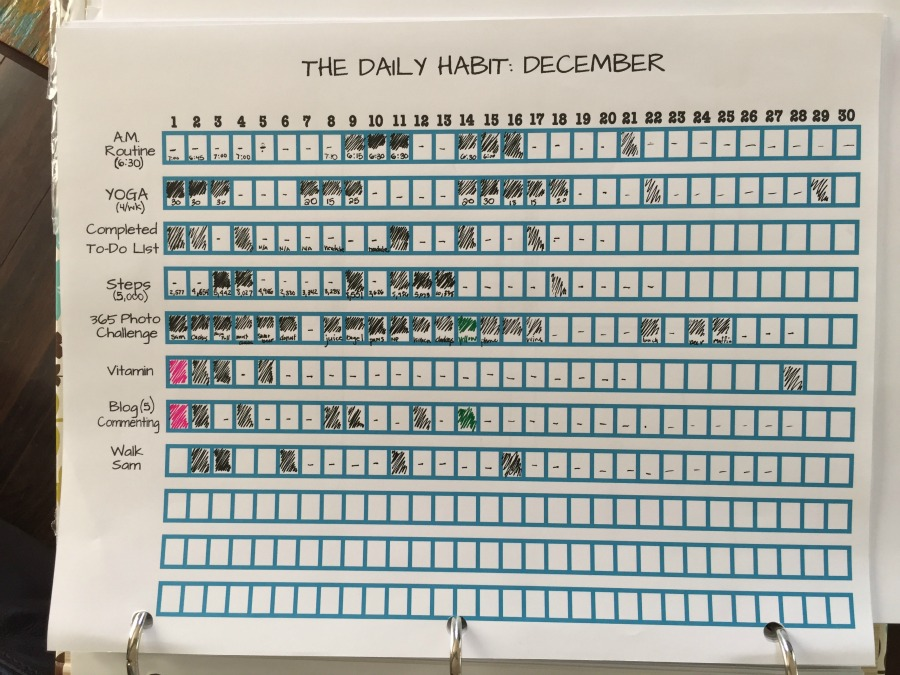 My Daily Habit December