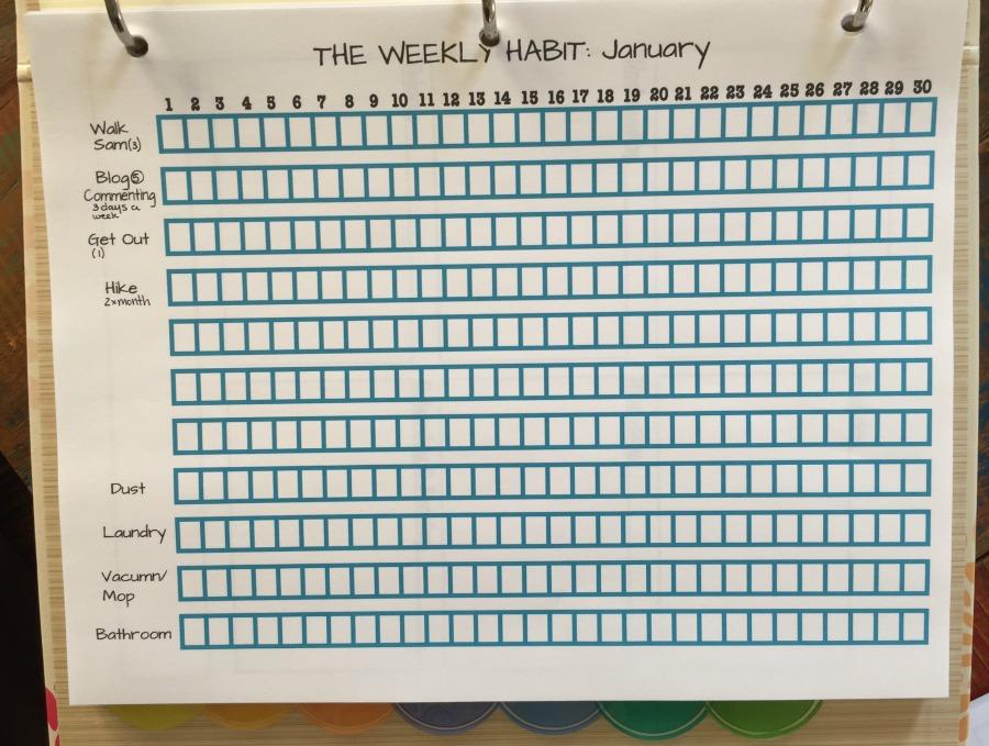 My Weekly Habit January