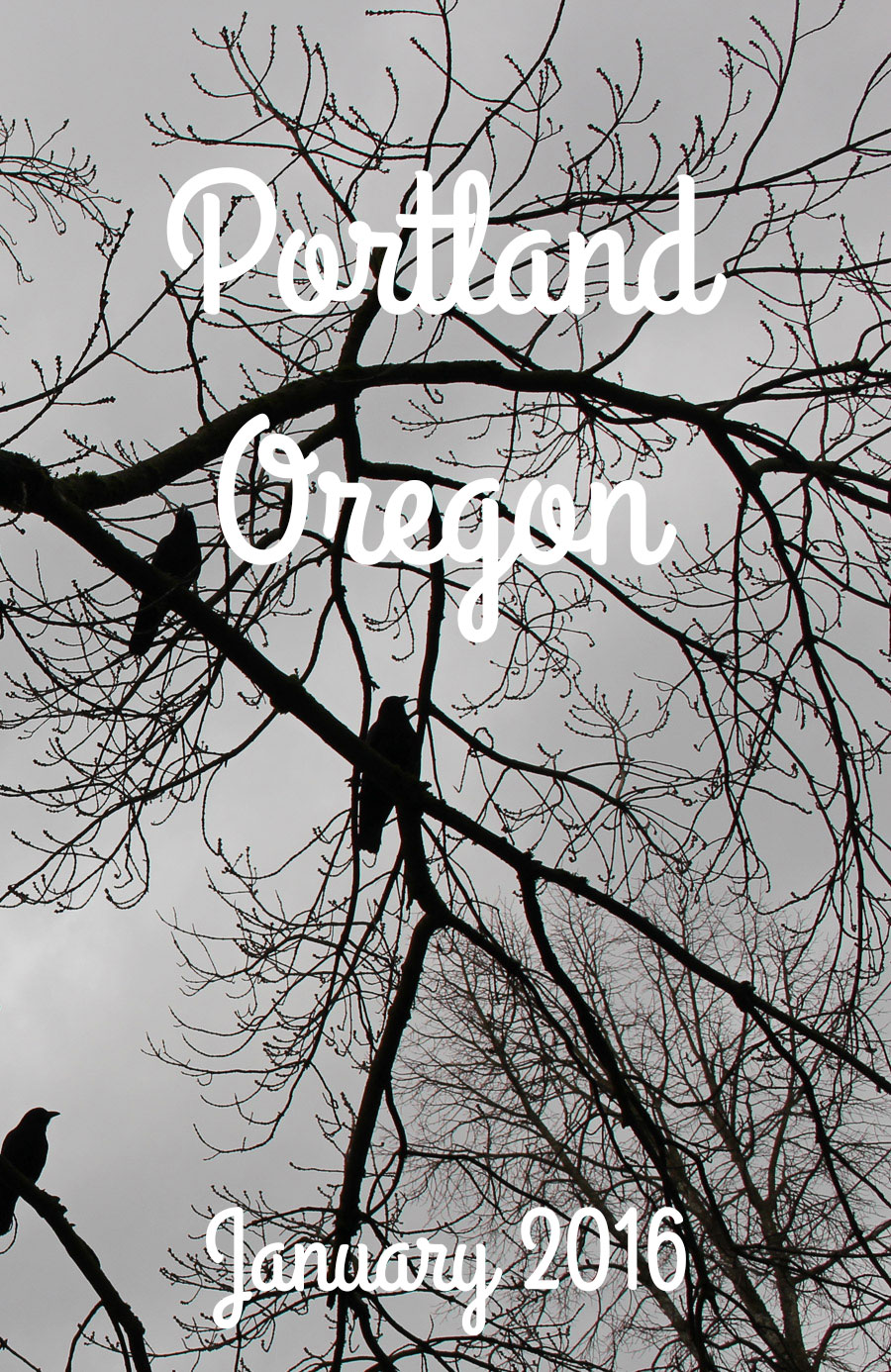 A 3 day trip to Portland Oregon in January, it was AWESOME.