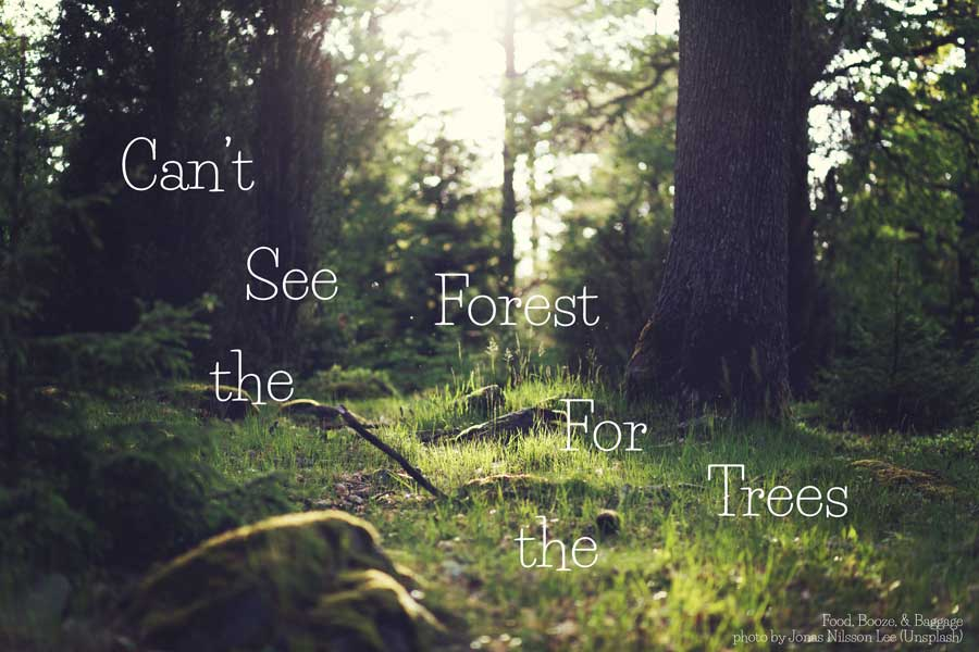 Can't-see-the-Forest-via-Food,-Booze,-&-Baggage