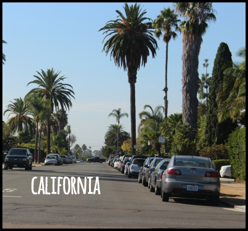 California Food, Booze, & Baggage