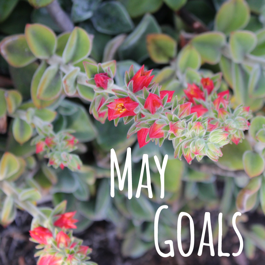 2015-May-Monthly-Goals