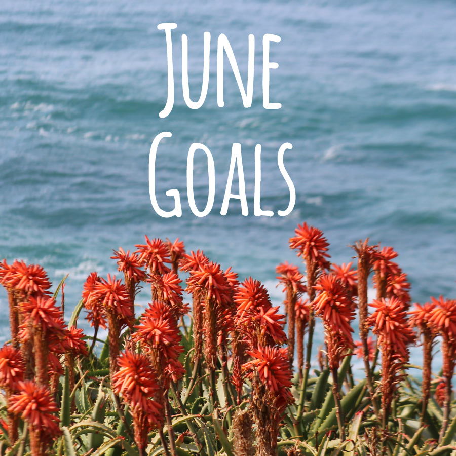June-2015-Goals