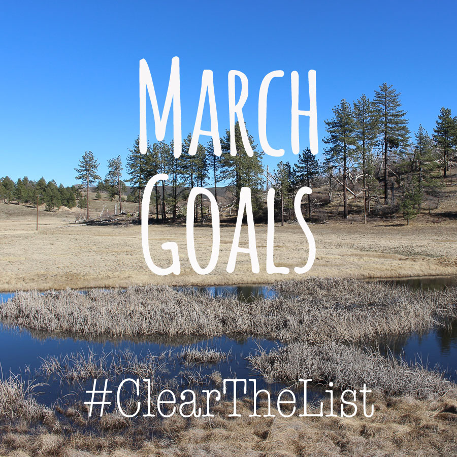 Clear the List Goal Setting for March 2016